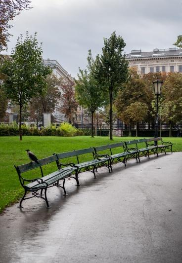Volksgarten (People's Gardens), Vienna, Austria (35mm, f3.2, 1/220s, ISO 200, PPL3-Altered)