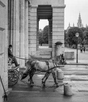 Near the Hofburg Palace, Vienna, Austria (35mm, f2.8, 1/180s, ISO 200, PPL3-Altered)