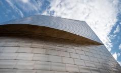 Detail of the Guggenheim Museum titanium façade, Bilbao, Spain (PPL1-Corrected)