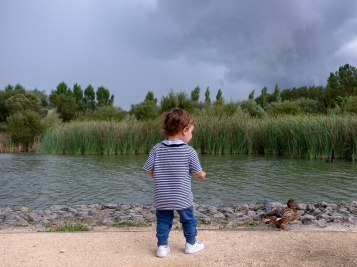 Gabriel and a cautious female mallard (Anas platyrhynchos) at Ataria, Basque Country, Spain (PPL1-Corrected)