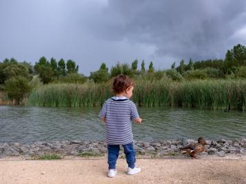 Gabriel and a cautious female mallard (Anas platyrhynchos) at Ataria, Basque Country, Spain (PPL1-Corrected)