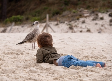 Gabriel looking at a juvenile yellow-legged gull (Larus michahellis), Cíes Islands, Spain (PPL1-Corrected)